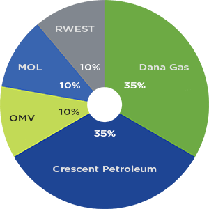 Pearl Petroleum Co  Ltd
